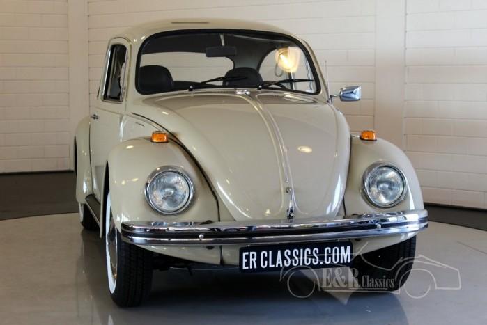 Volkswagen Beetle 1500 1970 kopen