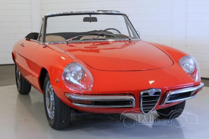 Alfa-Romeo Veloce Duetto Spider   kopen