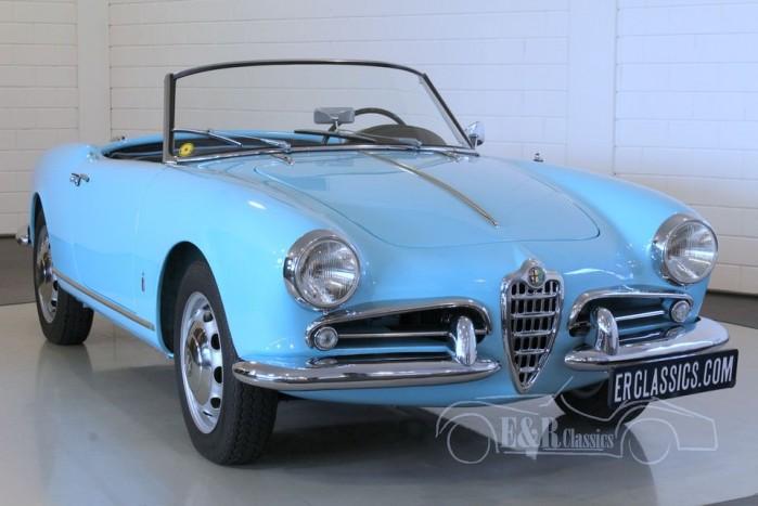 Alfa Romeo Giulietta Spider 1957 kopen