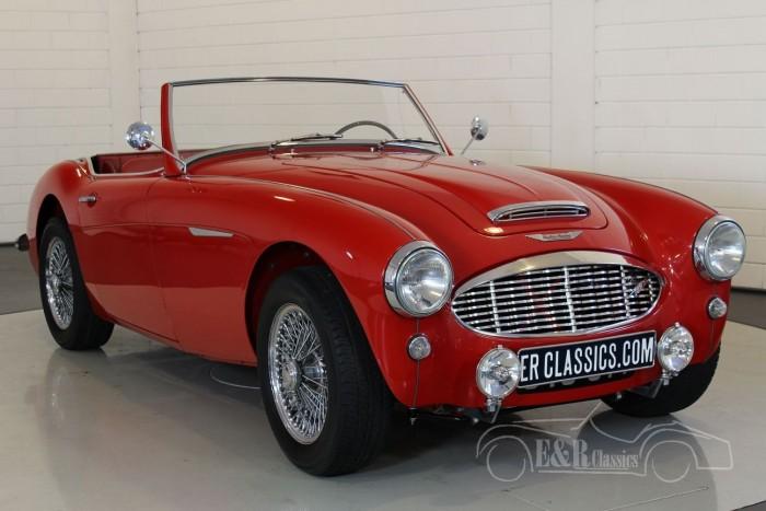 Austin Healey 100-6 1957 kopen