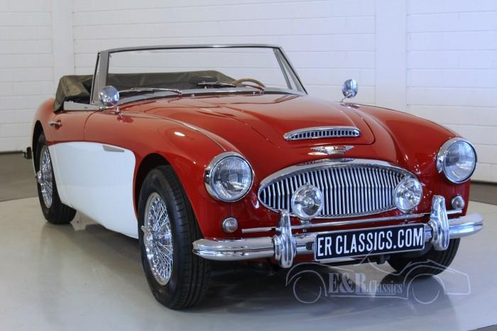 Austin-Healey 3000 MK3 1965 kopen