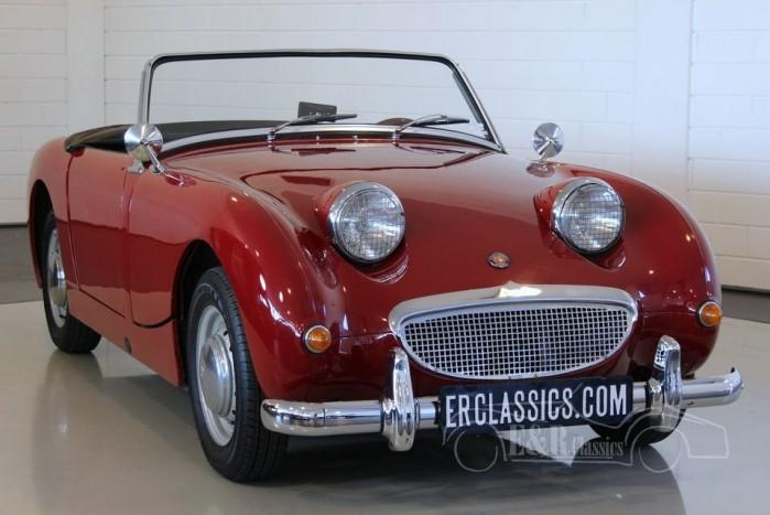 Austin Healey Sprite MKI Frogeye 1959  kopen