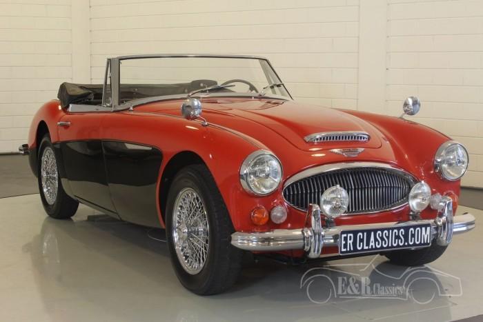 Austin Healey 3000 MK3 1967  kopen