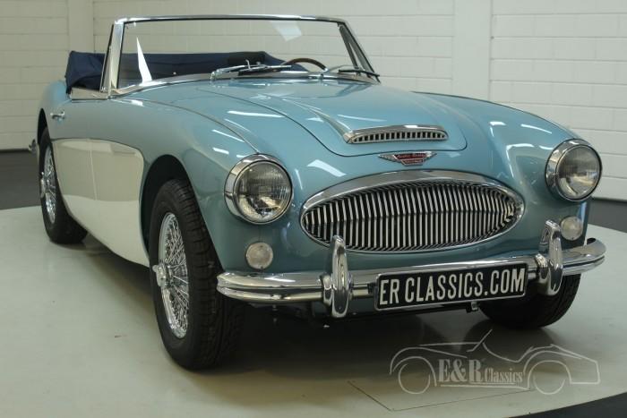 Austin Healey 3000 MK3 BJ8 1965  kopen