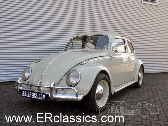 Volkswagen 1960 kopen