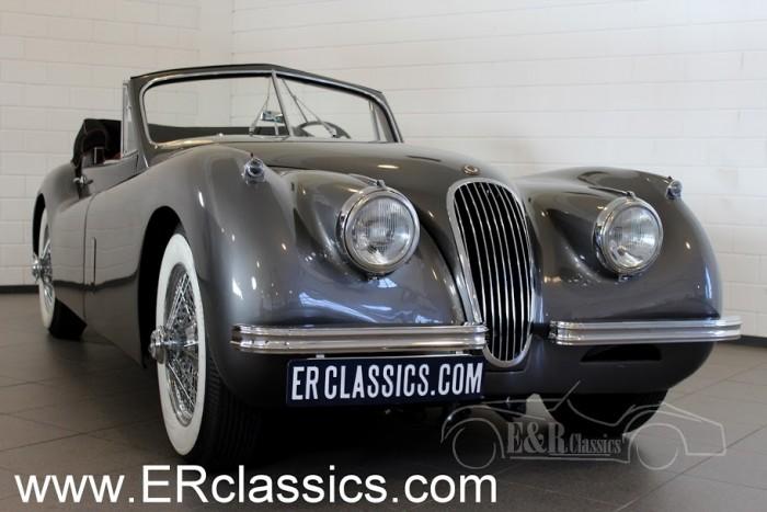 Jaguar XK120 Drophead Coupe 1953 kopen