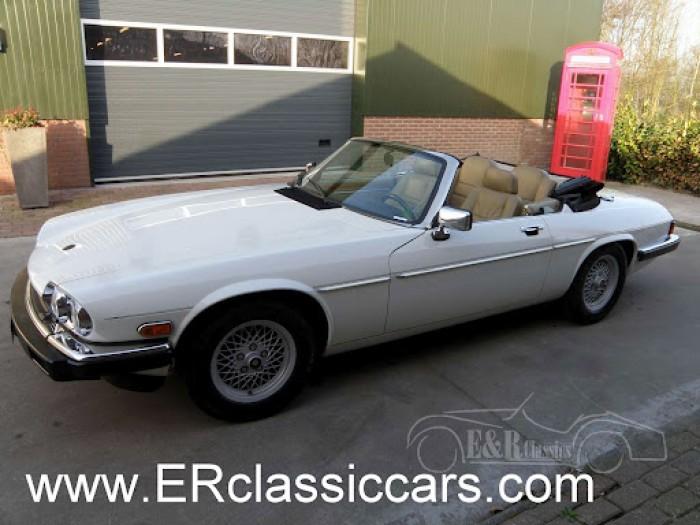 Jaguar 1988 kopen