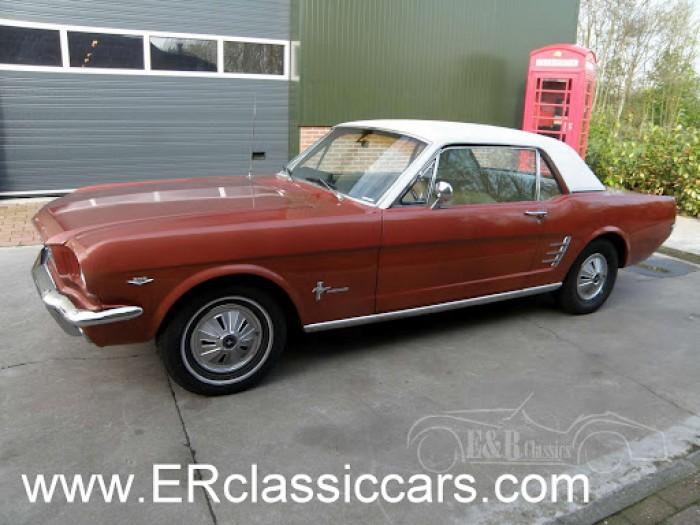 Ford 1966 kopen
