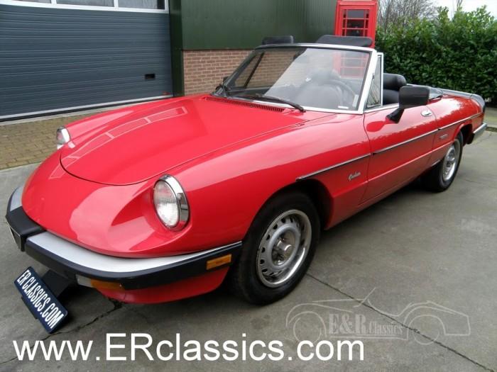 Alfa 1986 kopen