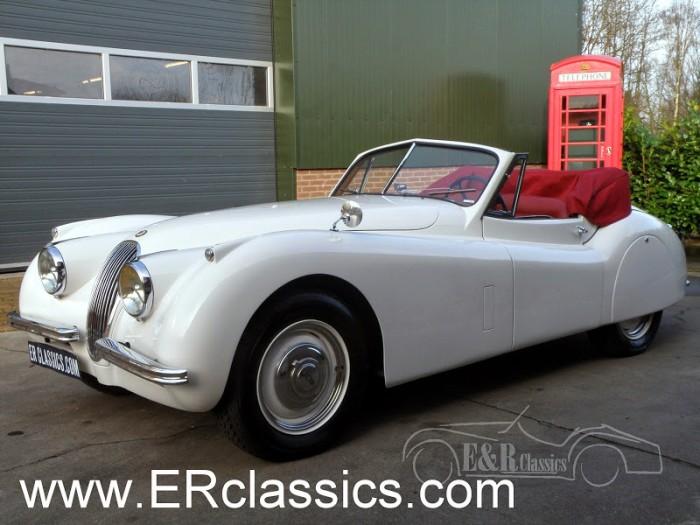 Jaguar 1954 kopen