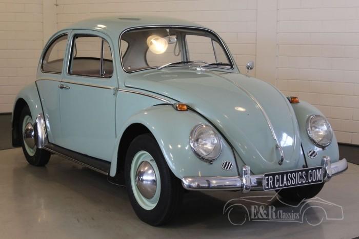 Volkswagen Kever 1965  kopen