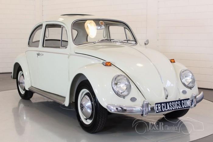 Volkswagen Kever 1964 kopen