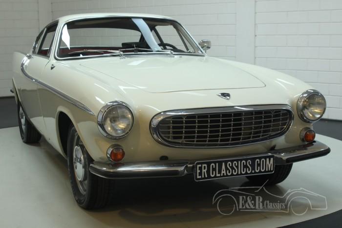 Volvo P1800S Coupe 1966  kopen