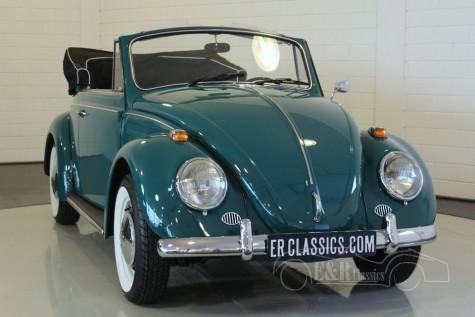 Volkswagen Beetle Cabriolet 1966 kopen