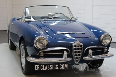 Alfa Romeo Giulia 1600 Spider 1963 kopen