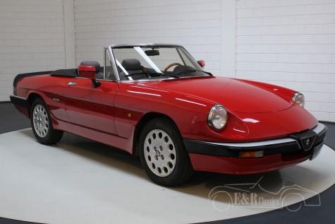 Alfa Romeo Spider 1987  kopen