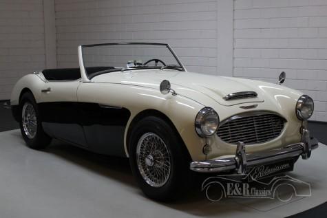Austin Healey 100-6 1956  kopen