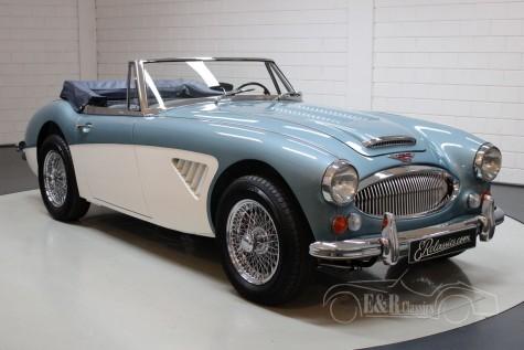 Austin Healey 3000 MK III 1965 kopen