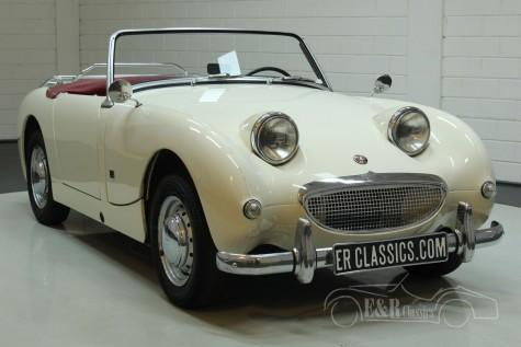 Austin Healey Sprite MK1 1960 kopen