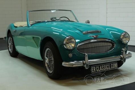 Austin Healey 3000 MK2 1960  kopen