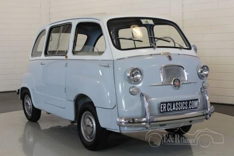 Fiat 600D Multipla 1965  kopen