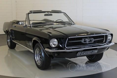 Ford Mustang Cabriolet V8 1967  kopen