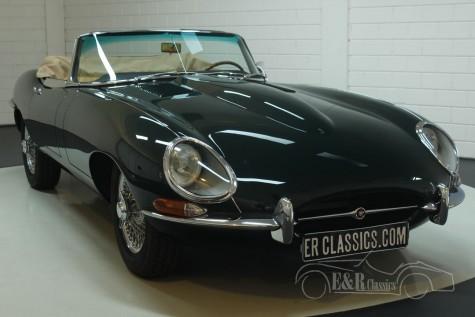 Jaguar E-Type S1 cabriolet 1966  kopen