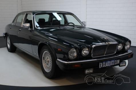 Jaguar XJ12 Series III 1991 kopen