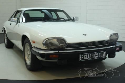 Jaguar XJS Coupe 1988  kopen