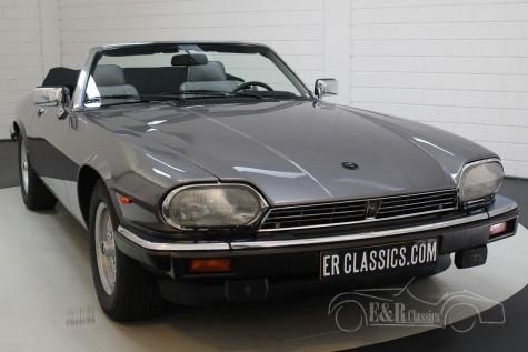 Jaguar XJS Cabriolet V12 1991 kopen