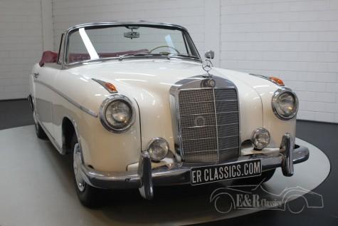 Mercedes-Benz 220SE Ponton Cabriolet 1960 kopen