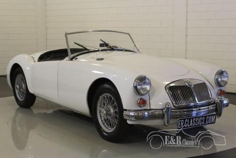 MGA 1961 Cabriolet  kopen