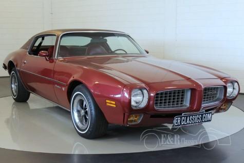 Pontiac Firebird Esprit Coupe V8 1973 kopen