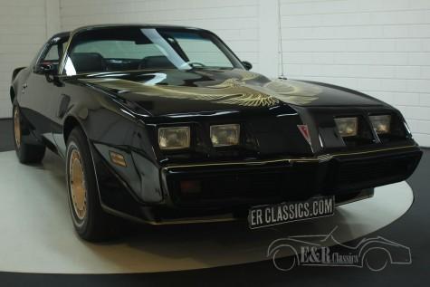 Pontiac Firebird Trans-Am 1980  kopen
