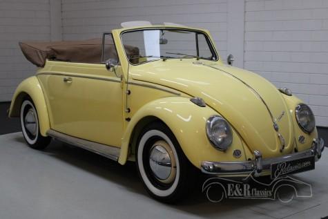 Volkswagen 1200 cabriolet 1963 kopen