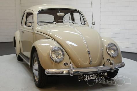 Volkswagen Beetle 1200 Dickholmer 1959 kopen