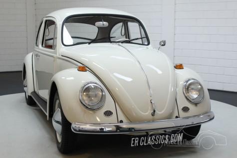 Volkswagen Kever 1200 1965 kopen