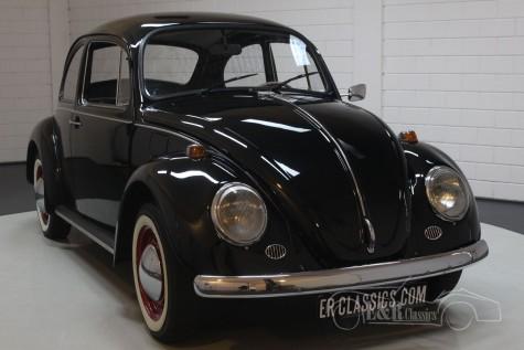Volkswagen Beetle 1972 kopen