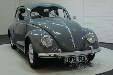 Volkswagen Kever 1953  kopen