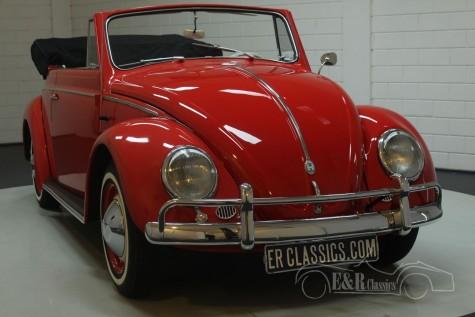 VW Kever Cabriolet 1959  kopen