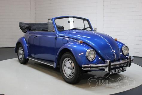 Volkswagen Beetle kopen