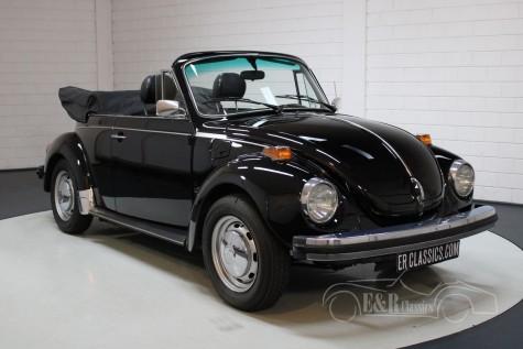 VW Kever Cabrio  kopen