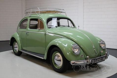 Volkswagen Beetle Oval 1953 kopen